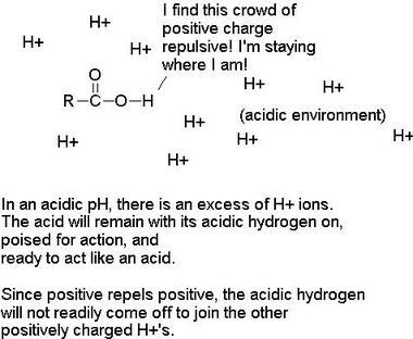 Acid3_jpeg_3